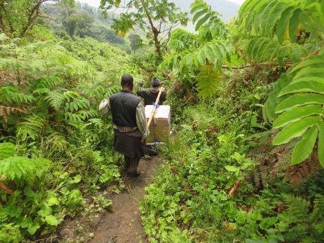 Lääke-erää kuljetetaan Kongon ylänköjen halki. Kuva: Niklas Saxén