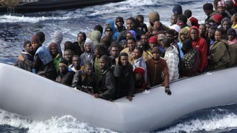 Migration-900x506